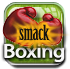 The Leaf Icon Factory-smackboxing.png