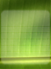 The Leaf Icon Factory-weather_day_bkgd_leaf.png