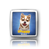 iElegance Icons-ipuppy-husky.png