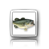 iElegance Icons-flick-fishing.png