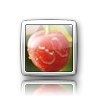 iElegance Icons-icon5.png