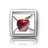 iElegance Icons-icon6.png