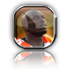 [RELEASE] iSatin-chad-ochocinco-experience_cat.png