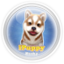 **Glass Orb Color** Theme By ToyVan-ipuppy-husky.png