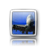 iElegance Icons-1.png