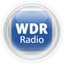 **Glass Orb Color** Theme By ToyVan-wdr-radio.png