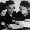 iElegance Icons-talmud-2.png