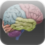 [RELEASE] iSatin-3d-brain.png