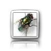 iElegance Icons-fly-control.png