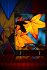 Xhd  [Release]-xhd-herbst.png
