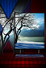 Xhd  [Release]-xhd-winter.png