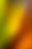 Hope A FREE Charity Theme-autumn-rainbow.png