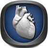 boss.iOS now available on Theme it app-anatomy.png
