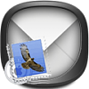 boss.iOS now available on Theme it app-mailv81reg.png