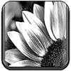 MiOS  [beta release] by Truck-ph0t0.png