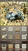 dune - iOS theme by @FIF7Y-img_0126.png