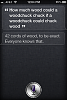 Siri Purposely Designed To Have A Slight Attitude-img0008hz.png